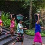 indonezia00008